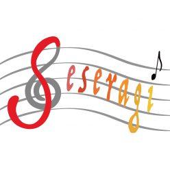 吹奏楽団せせらぎ